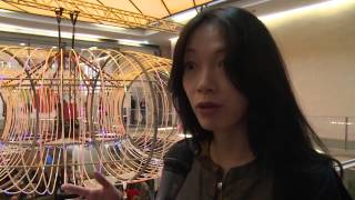 Chineasy by ShaoLan: Learn Chinese DLD 2014 *German Interview* thumbnail