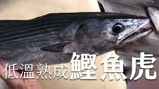 低溫熟成前置〖洄游魚類〗,血拔鰹魚虎?|How to ripening Migratory fish, squid tiger, at low temperatures? | 海洋主廚愛爾文|魚類處理