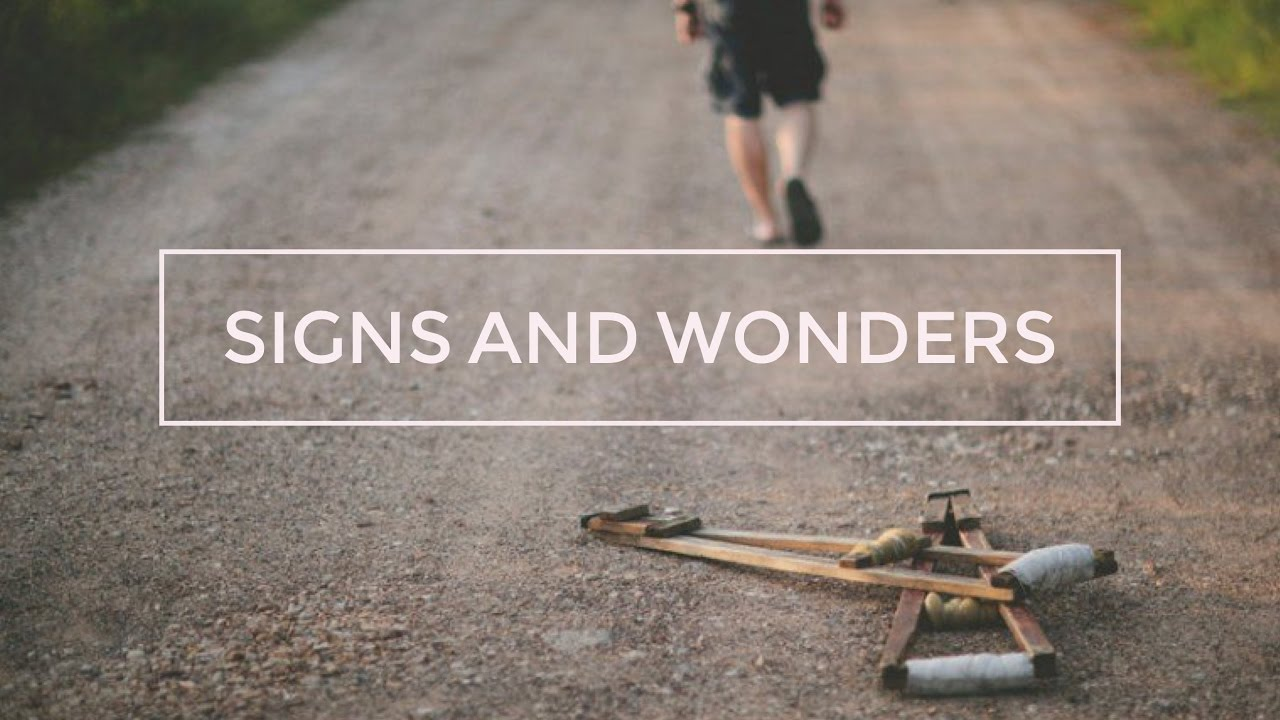 Image result for signs and wonders