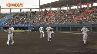 『「ごちそうアーツ」』『第44回日本ハンドボールリーグ 宮崎大会』『2020球春みやざきベースボールゲームズ』「ジモ通」