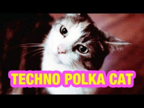 DOUBLE ON GENRE: TECHNO + POLKA