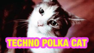double on genre techno polka