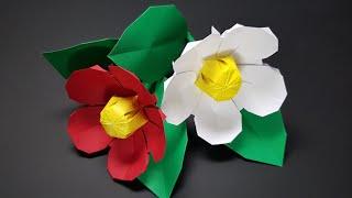 동백꽃접기 - Paper camellia - 꽃접기 (…