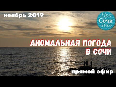 Аномальная погода в Сочи. Что не так с этой осенью?! Ноябрь 2019 в видео прямого эфира 🔵ПроСОЧИлись