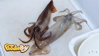 Sliced Raw Squid / Dokdo Kkotsaeu, Busan Korea / Korean Street Food / 오징어회 / 부산 부평동 독도꽃새우