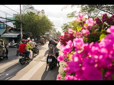 Binh Dong Floating Flower Market.The Floating Flower Market Of Ben Binh Saigon