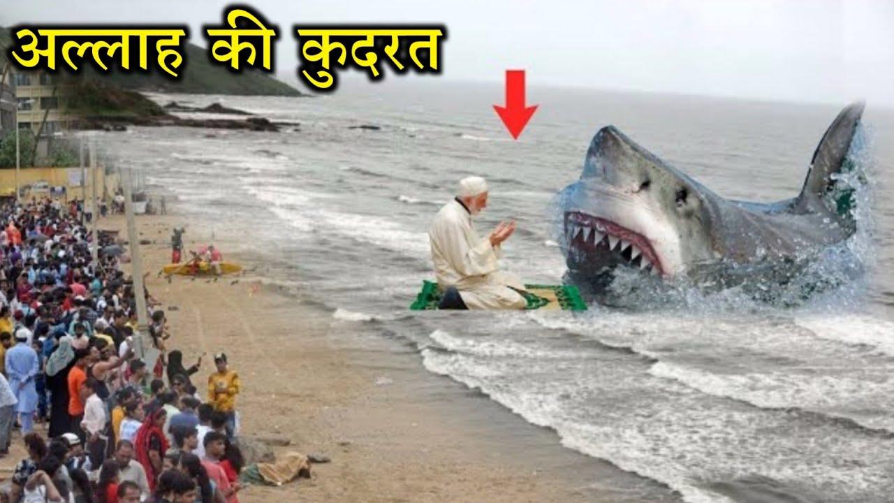 Samandar Ki Machli Aur Allah Ki Rehmat || समंदर की मछली और अल्लाह की रहमत