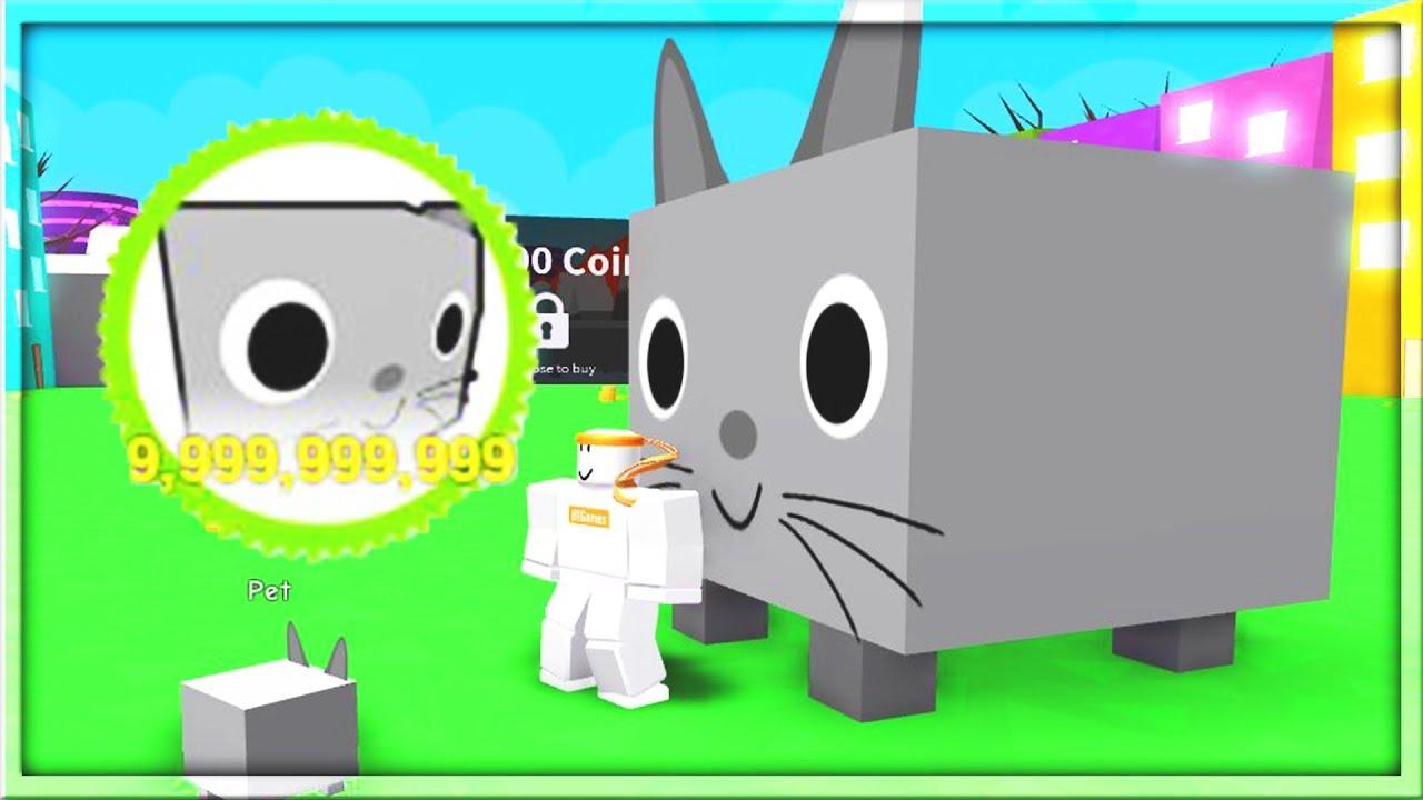 Giant Cat Pet Simulator Plush Pet S Gallery