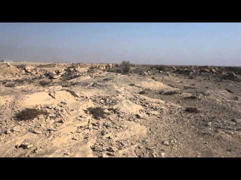 Exploring Al Jassasiya Rock Carvings, Qatar 1