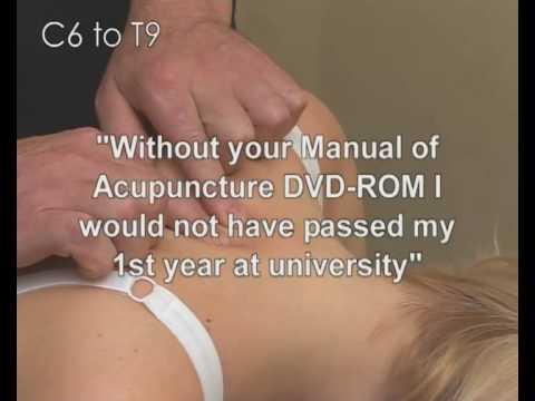 Locating vertebrae C6 to T9 - acupuncture point location video - YouTube