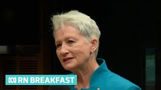 Dr Kerryn Phelps preferencing Liberals ahead of Labor in Wentworth by-election | RN Breakfast