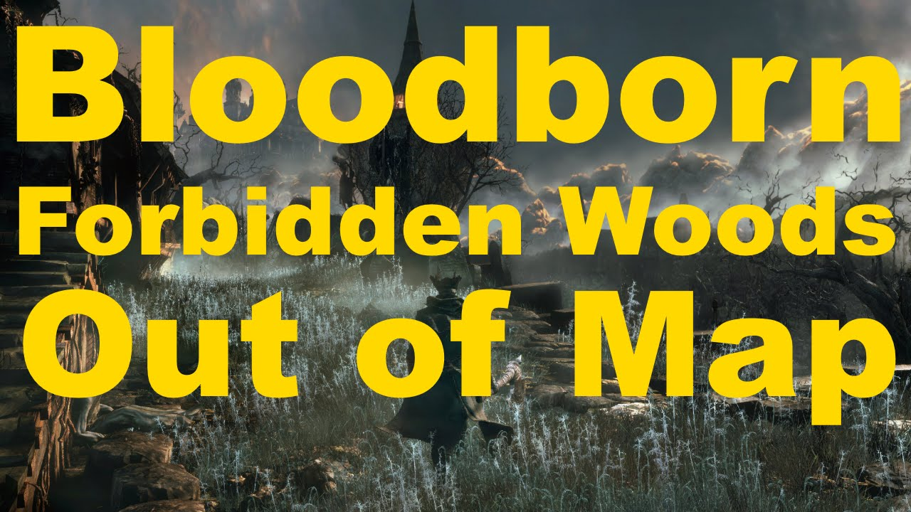 how to get to forbidden woods bloodborne