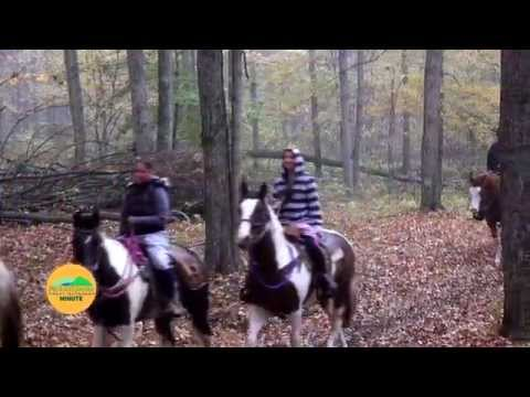 Equestrian Paradise - PA Great Outdoors