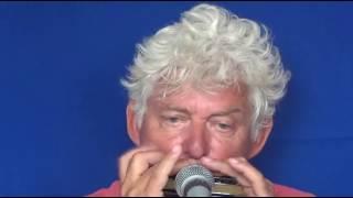 Tims Tiny Tunes #281 | BLUES, level 3, Harmonica play-along lessons | Jazz harmonica licks (lr)