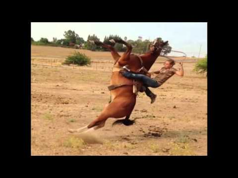 horses and sexy women from YouTube · Duration:  2 minutes 5 seconds