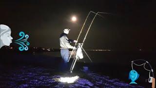 Sea Fishing Live. Down On The Shingle.