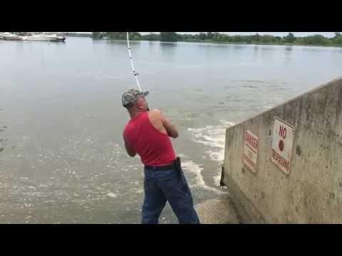 Catfish Fishing - Dunville - Ontario.