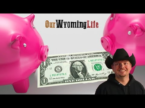 The Business of Raising Pigs, from Cost to Profit