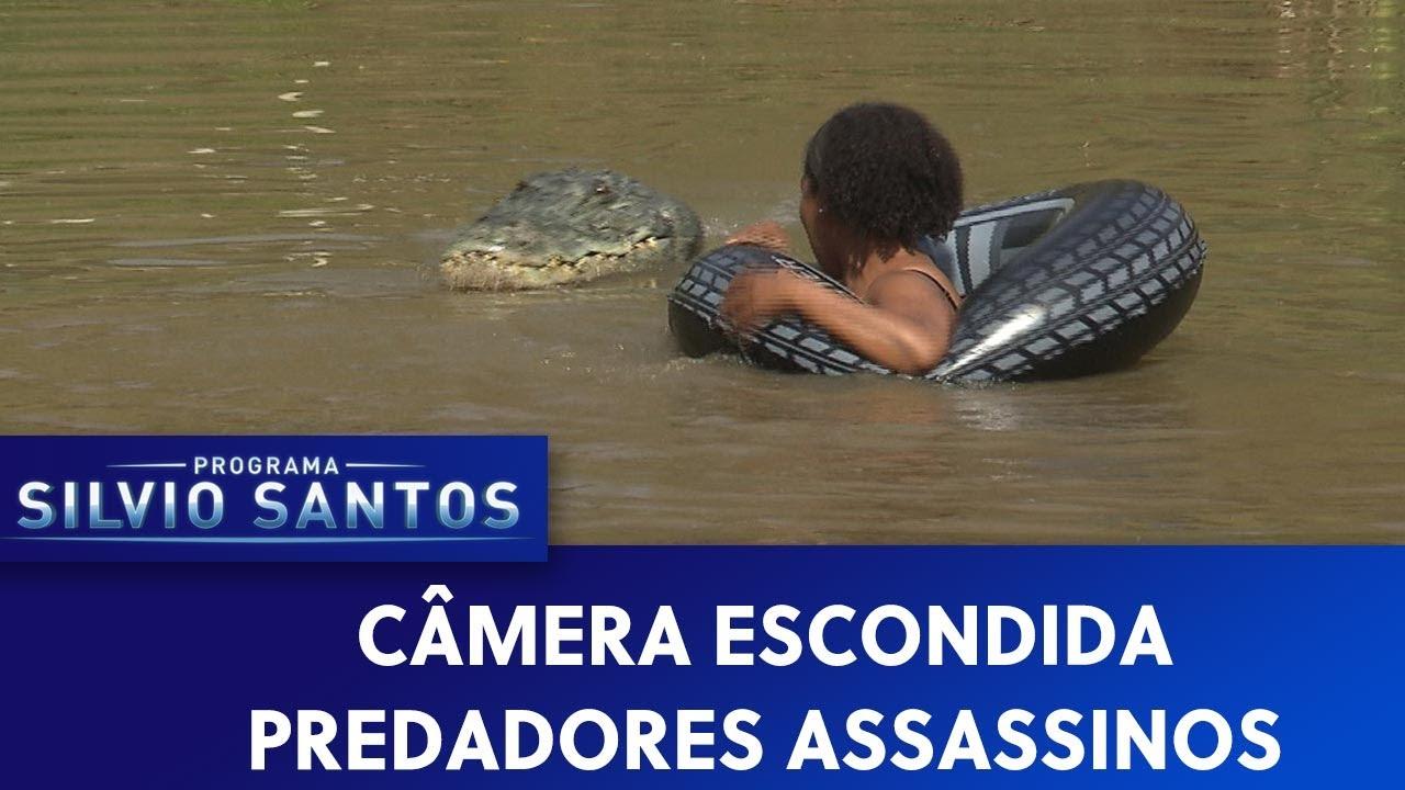 Download Predadores Assassinos - Crawl Prank | Câmeras Escondidas (22/09/19)