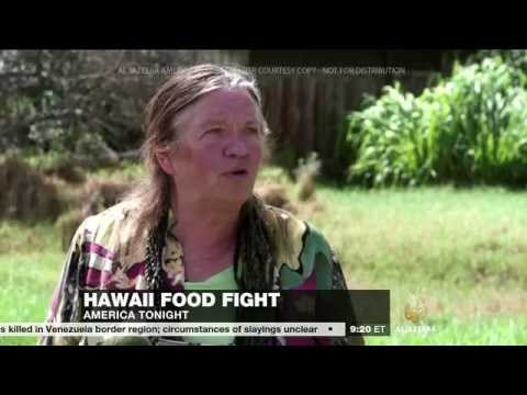 Hawaii GMO 2014