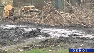 Месячник по наведению чистоты в Красюковском сельском поселении