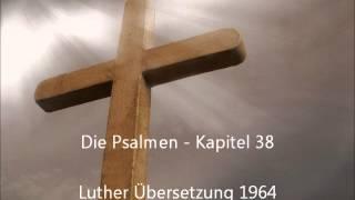 Die Psalmen - Kapitel 38 [LuÜ]