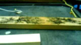 Hv Wood Burn Coat Rack