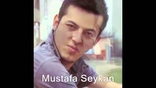 Akşam Güneşi 2014 - Mustafa Seykan (ARABEKS MÜZİKLER)