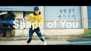 ED SHEERAN - Shape Of You | Kyle Hanagami Choreography l Cover Lee ji yoon