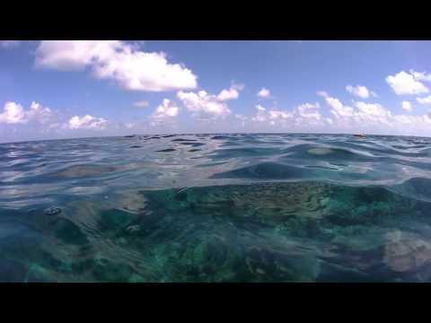 Sea plane landing at Veligandu, Maldives