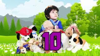 10 perritos cancion infantil