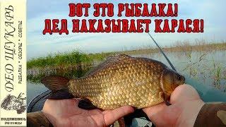 Ловля карася в июле. Вот это рыбалка! Дед наказывает карася!