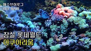 카퍼밴드 먹이주기,냉동장구벌레,롯데월드 아쿠아리움,해수…