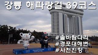강릉 해파랑길 39코스 젊은해변 풍경