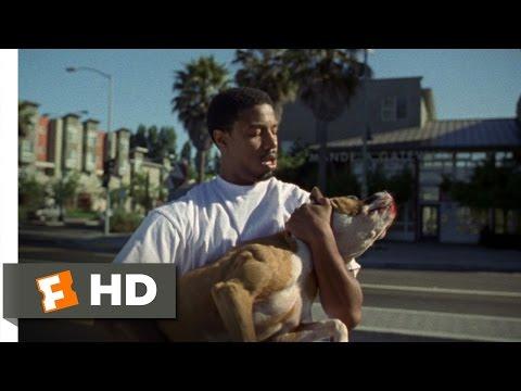 Fruitvale Station (3/10) Movie CLIP - Stray Dog (2013) HD