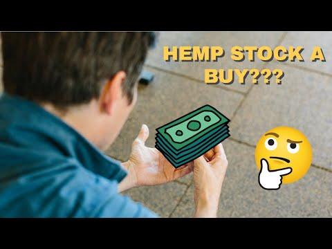 HEMP STOCK UP 35% AGAIN TODAY – BUY NOW?