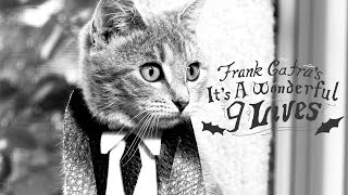It's A Wonderful Life (Cute Kitten Version) - It's A Wonderful 9 Lives