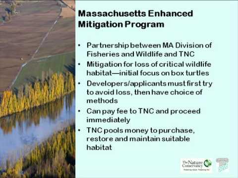 Conservation Finance Forum: Aggregation and Mitigation for Forest Conservation