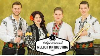 Melodii din Bucovina SARBE HORE si BATUTE INSTRUMENTALE ca la nunta in Moldova