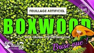 Vidéo: Feuillage Artificiel BUIS BOXWOOD à 37TTC/m²