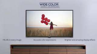Aiwa 55 Inch Smart LED TV II Buy Latest Electronic Product Online II Aiwa India