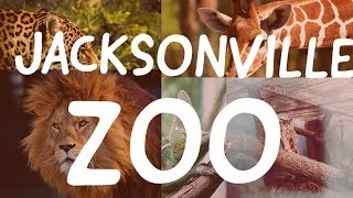JACKSONVILLE ZOO || TRAVEL WITH US!!