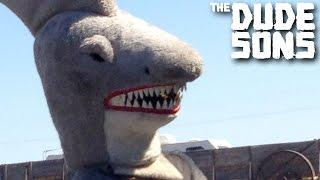 Shark Attack Prank!!