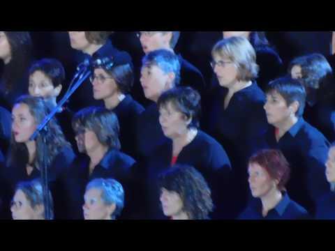 Les Fous Chantants d'Alès avec Florent Pagny. Petit Medley...29 07 2017