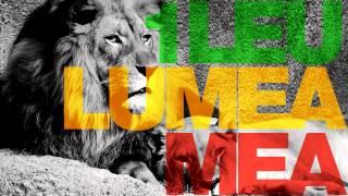 One Lion - Lumea Mea