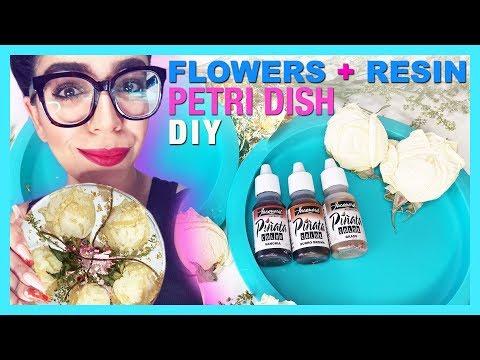 DIY Dried FLOWERS in Resin Petri TUTORIAL