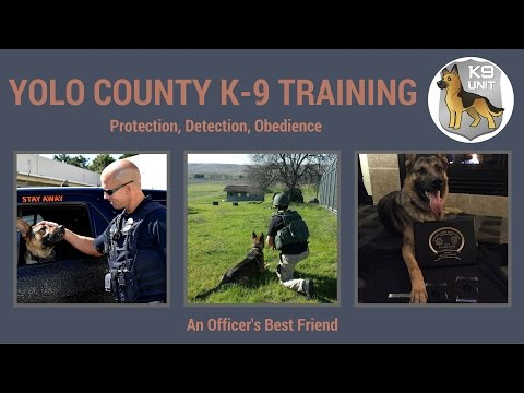 Yolo county K-9 Training Video