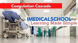 Medical School - Coagulation Cascade