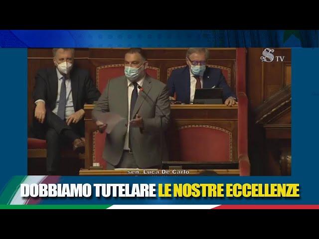 Il Sen. De Carlo interviene sulla tutela e promozione dei prodotti agroalimentari italiani