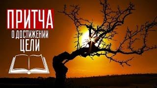 История про фермера и кукурузу от Софьи Атласовой / Притча о достижении цели